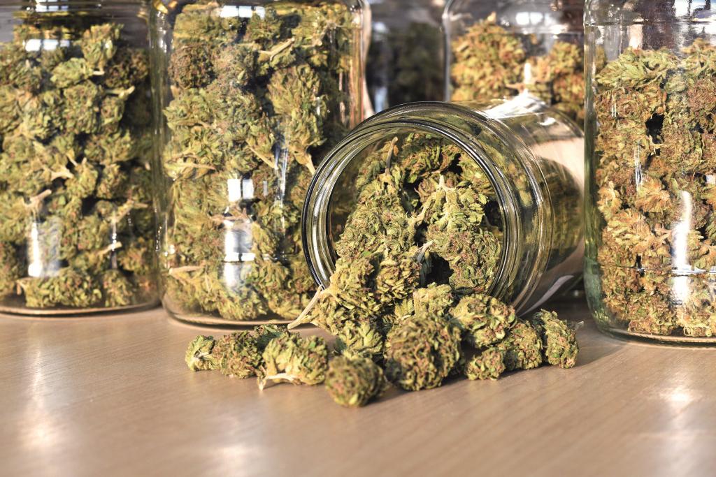 Utilizing Medical Cannabis